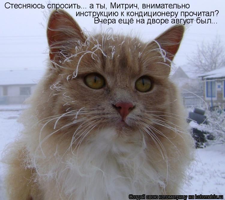 Котоматрица: Стесняюсь спросить... а ты, Митрич, внимательно инструкцию к кондиционеру прочитал? Вчера ещё на дворе август был...