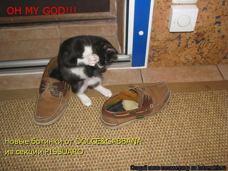 Котоматрица: OH MY GOD!!! Новые ботинки от DOLCE&GABBANA из секции PISSUARO