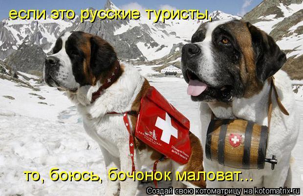 Котоматрица: если это русские туристы, то, боюсь, бочонок маловат...