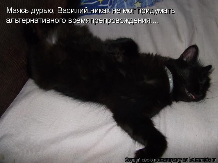 Котоматрица: Маясь дурью, Василий никак не мог придумать альтернативного времяпрепровождения....
