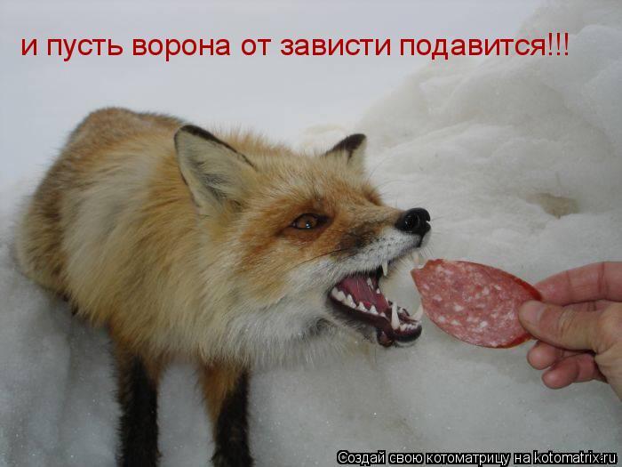 http://kotomatrix.ru/images/lolz/2011/08/08/965549.jpg