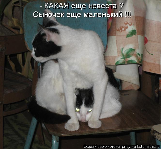 http://kotomatrix.ru/images/lolz/2011/08/08/965740.jpg
