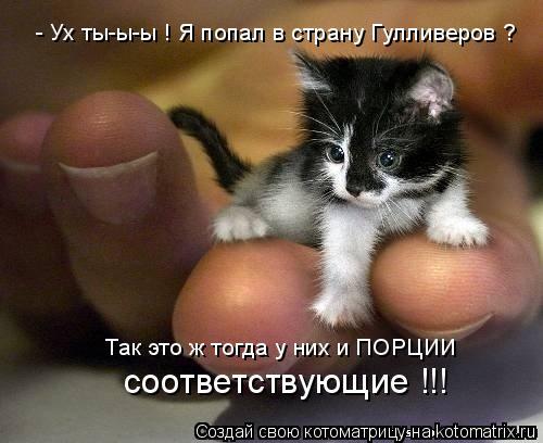 http://kotomatrix.ru/images/lolz/2011/08/08/965748.jpg