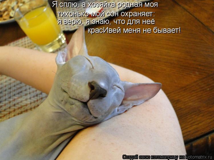 http://kotomatrix.ru/images/lolz/2011/08/08/965755.jpg
