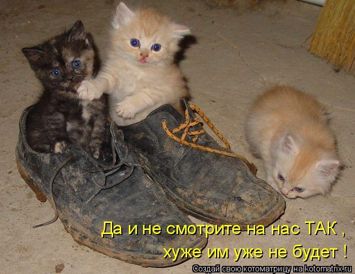 http://kotomatrix.ru/images/lolz/2011/08/08/965763.jpg