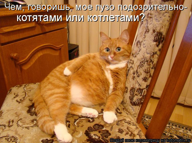 http://kotomatrix.ru/images/lolz/2011/08/08/965794.jpg