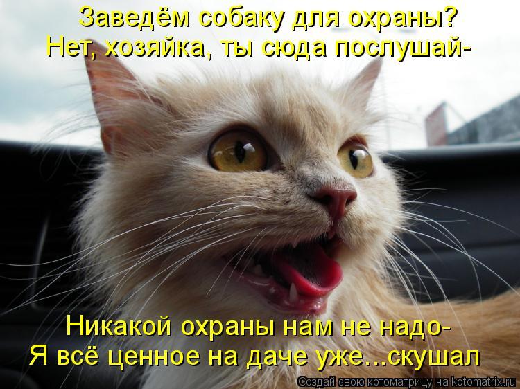 http://kotomatrix.ru/images/lolz/2011/08/08/965802.jpg