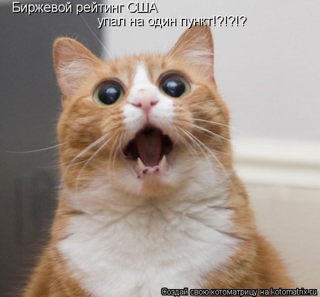 Котоматрица: Биржевой рейтинг США упал на один пункт!?!?!?