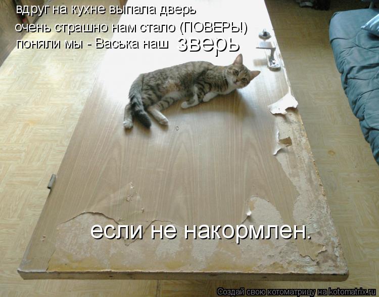 Котоматрица: вдруг на кухне выпала дверь очень страшно нам стало (ПОВЕРЬ!) поняли мы - Васька наш зверь если не накормлен.