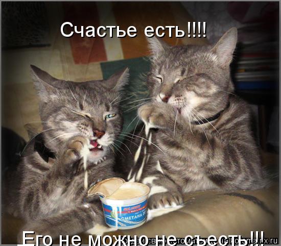 Котоматрица: Счастье есть!!!! Его не можно не съесть!!! Его не можно не съесть!!!
