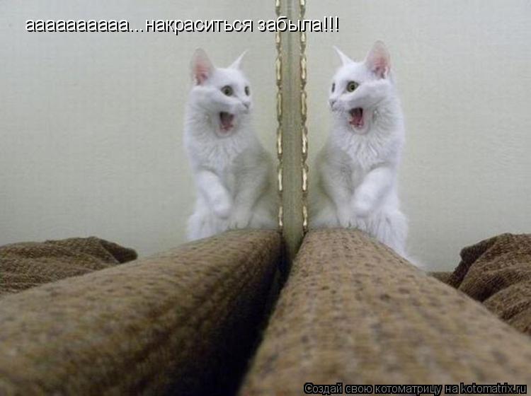 http://kotomatrix.ru/images/lolz/2011/08/09/966301.jpg