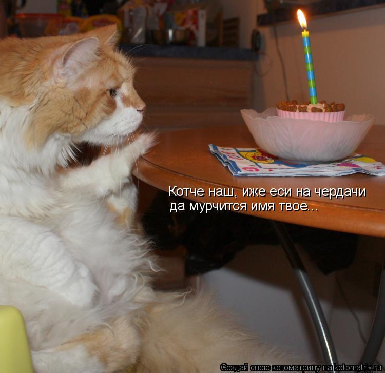 Котоматрица: Котче наш, иже еси на чердачи да мурчится имя твое...