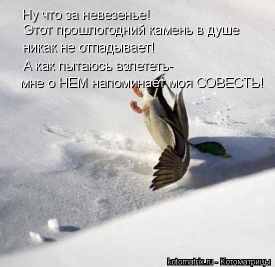 Записан.  Re: Подборка прикольных фотографий.  Пол.