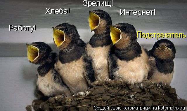 Котоматрица - Работу! Хлеба! Зрелищ! Интернет! Подстрекатель.