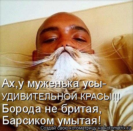 Котоматрица - Ах,у муженька усы- УДИВИТЕЛЬНОЙ КРАСЫ!!! Борода не бритая, Барсиком ум