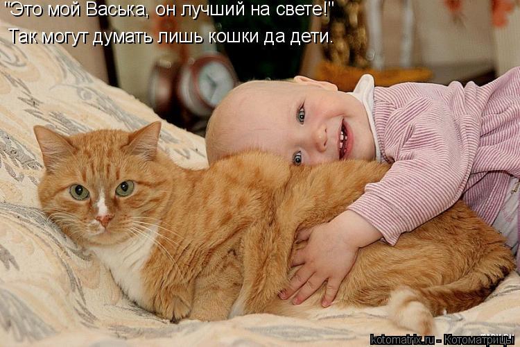 """Котоматрица: Это мой Васька лучший на свете! Так могут думать лишь кошки да дети. """"Это мой Васька, он лучший на свете!"""""""