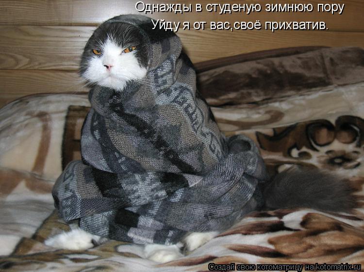 Котоматрица: Однажды в студеную зимнюю пору Уйду я от вас,своё прихватив.