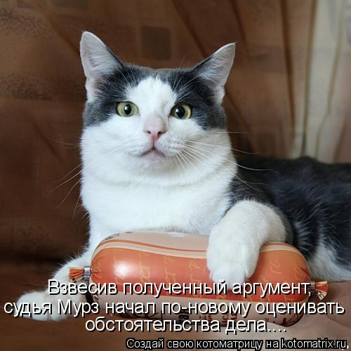 Котоматриця!)))) - Страница 8 968918