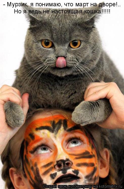Котоматрица: - Мурзик, я понимаю, что март на дворе!.. Но я ведь не настоящая кошка!!!!!