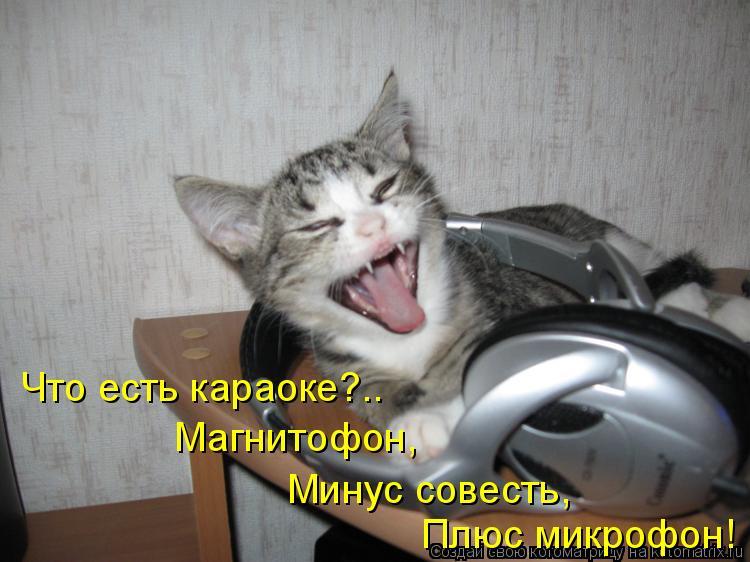 Котоматрица: Что есть караоке?.. Магнитофон, Минус совесть, Плюс микрофон!