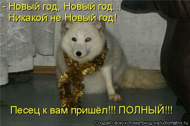 Котоматрица: - Новый год, Новый год... Никакой не Новый год! Песец к вам пришёл!!! ПОЛНЫЙ!!!