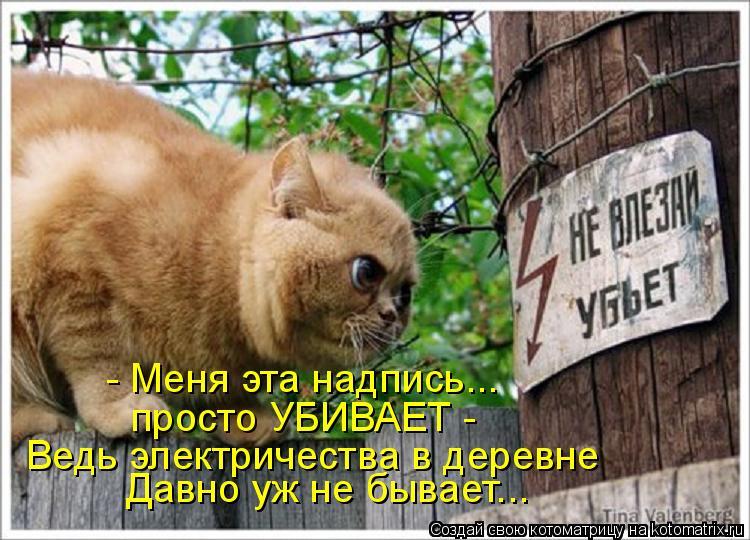 Котоматрица: - Меня эта надпись... просто УБИВАЕТ -  Ведь электричества в деревне Давно уж не бывает...