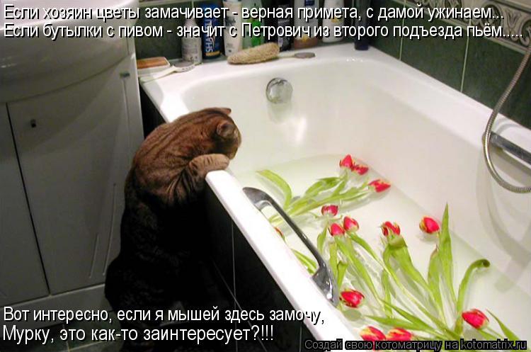 Если хозяин цветы замачивает - верная примета, с дамой ужинаем... Если бутылки с пивом - значит с Петровичем из второго подъезда пьём..... Вот интересно