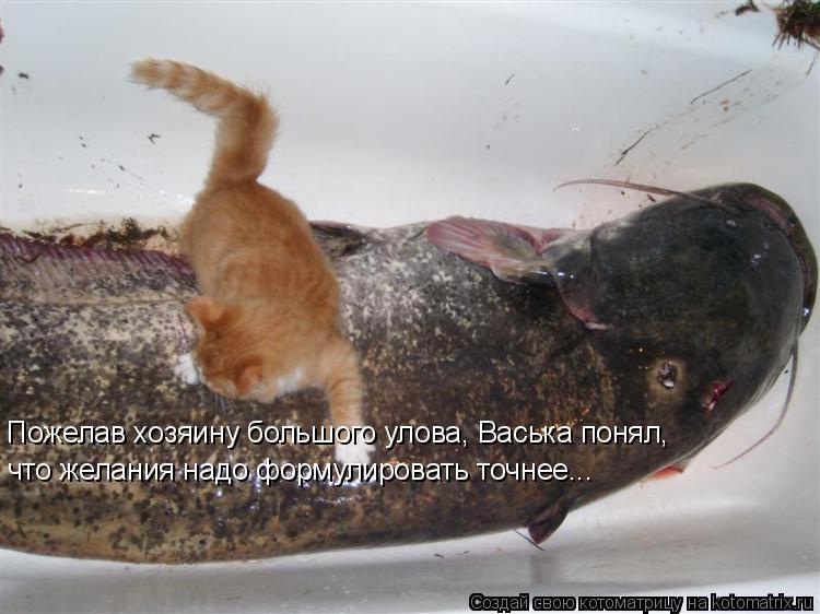 Пожелав хозяину большого улова, Васька понял, что желания надо формулировать точнее...