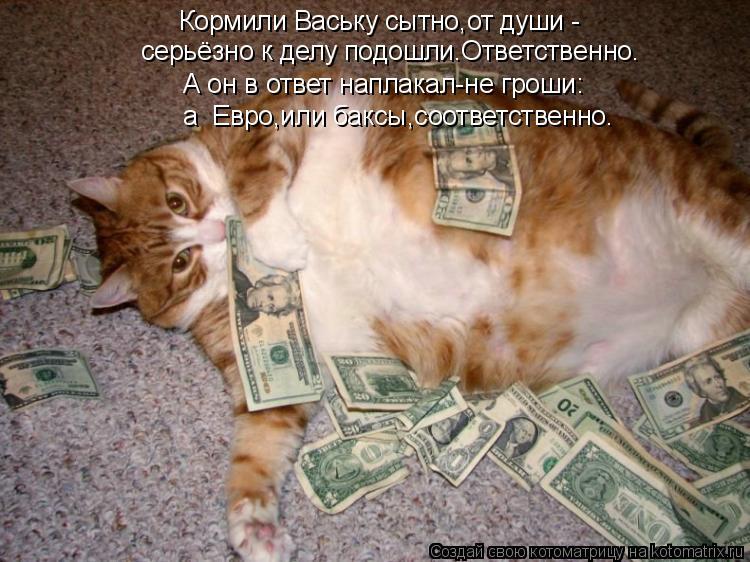Котоматрица: Кормили Ваську сытно,от души - серьёзно к делу подошли.Ответственно. А он в ответ наплакал-не гроши: а  Евро,или баксы,соответственно.
