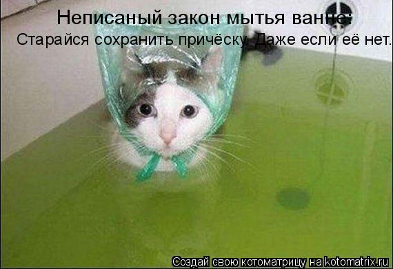Котоматрица: Старайся сохранить причёску. Даже если её нет. Неписаный закон мытья ванне: