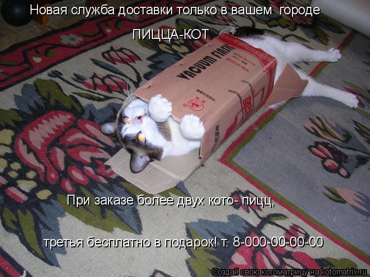 Котоматрица: Новая служба доставки только в вашем  городе  ПИЦЦА-КОТ При заказе более двух кото- пицц, третья бесплатно в подарок! т. 8-000-00-00-00