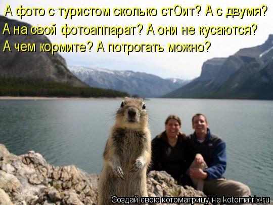 Котоматрица: А фото с туристом сколько стОит? А с двумя? А на свой фотоаппарат? А они не кусаются? А чем кормите? А потрогать можно?