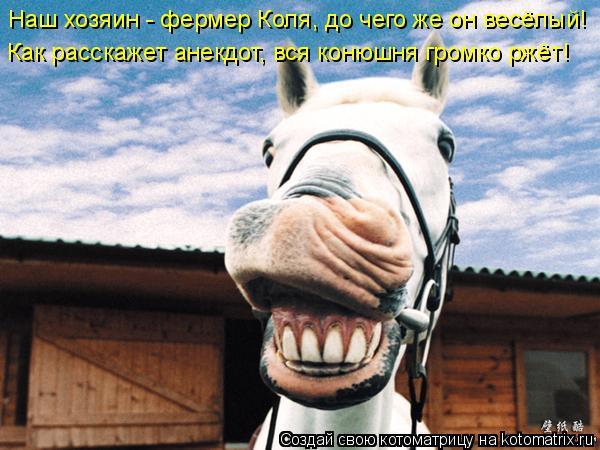 Котоматрица: Наш хозяин - фермер Коля, до чего же он весёлый! Как расскажет анекдот, вся конюшня громко ржёт!