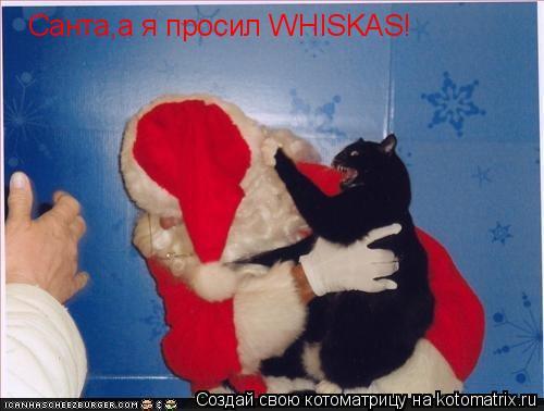Котоматрица: Санта,а я просил WHISKAS!