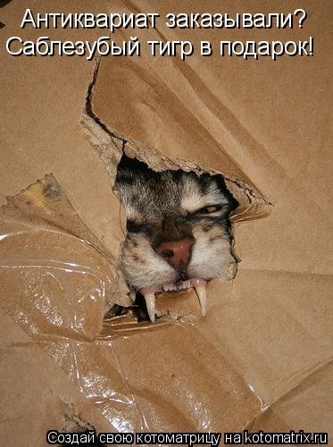 Котоматрица: Антиквариат заказывали? Саблезубый тигр в подарок!