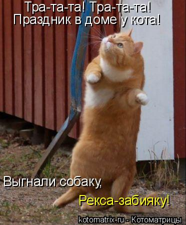 Котоматрица: Тра-та-та! Тра-та-та! Праздник в доме у кота! Выгнали собаку, Рекса-забияку!