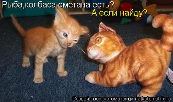 Котоматрица: Рыба,колбаса,сметана есть? А если найду?