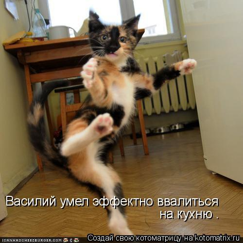 Котоматрица - Василий умел эффектно ввалиться  на кухню .