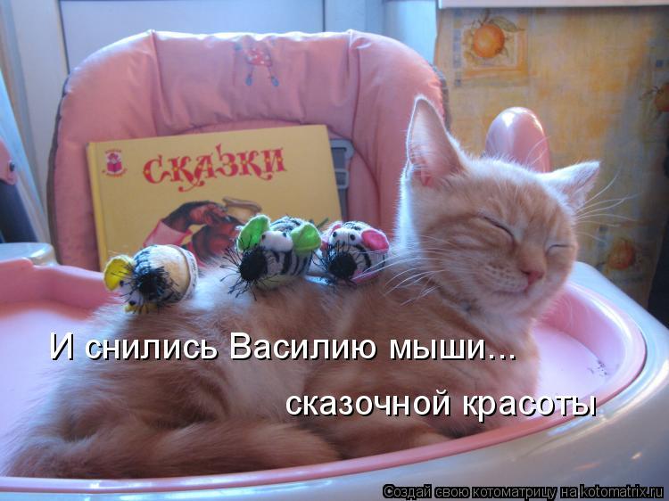 Котоматрица: И снились Василию мыши... сказочной красоты