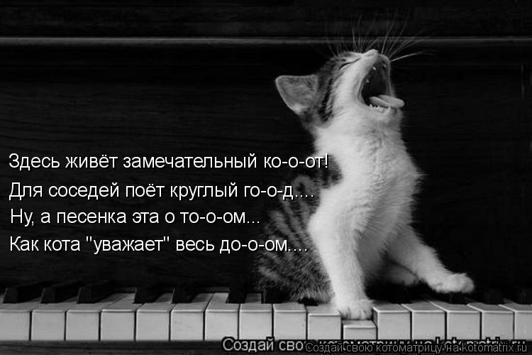 """Котоматрица: Здесь живёт замечательный ко-о-от! Для соседей поёт круглый го-о-д.... Ну, а песенка эта о то-о-ом... Как кота """"уважает"""" весь до-о-ом...."""