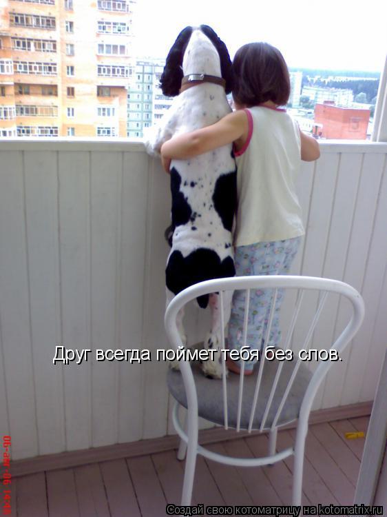 Котоматрица: Друг всегда поймет тебя без слов.