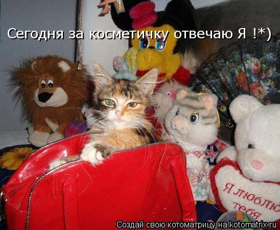 Котоматрица: Сегодня за косметичку отвечаю Я !*)