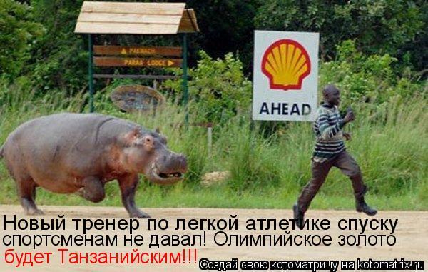 Котоматрица: Новый тренер по легкой атлетике спуску  спортсменам не давал! Олимпийское золото будет Танзанийским!!!