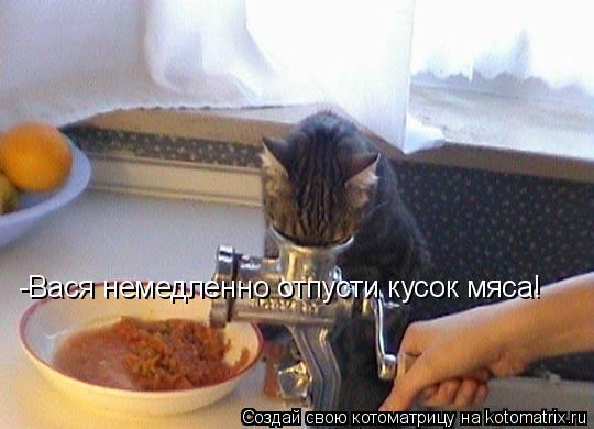 Котоматрица: -Вася немедленно отпусти кусок мяса!