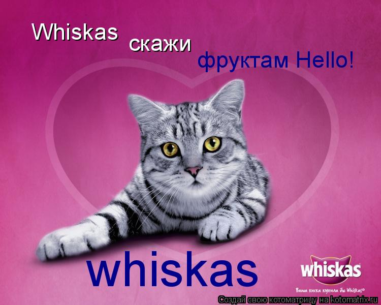 Котоматрица: Whiskas скажи фруктам Hello! whiskas