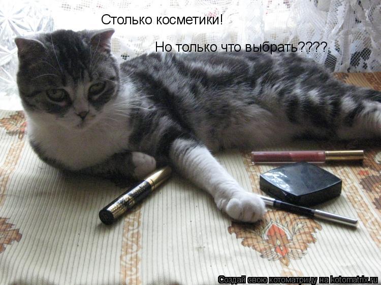 Котоматрица: Столько косметики! Но только что выбрать????