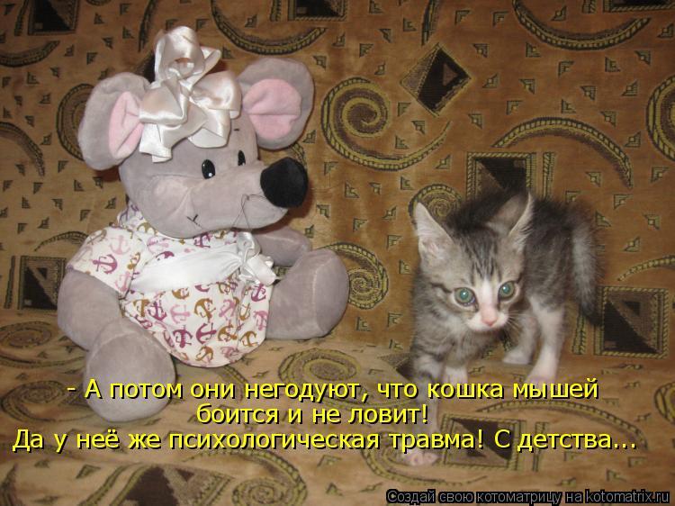 Котоматрица: - А потом они негодуют, что кошка мышей  боится и не ловит! Да у неё же психологическая травма! С детства...