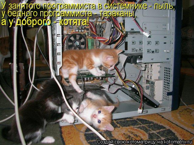 Котоматрица - У занятого программиста в системнике - пыль, у бедного программиста -