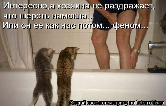 Котоматрица: Интересно,а хозяина не раздражает, что шерсть намокла...  Или он ее как нас потом... феном...