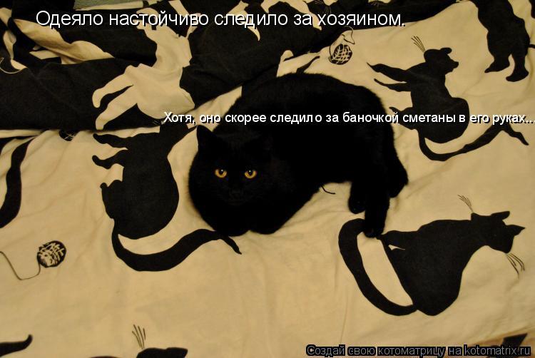 Котоматрица: Одеяло настойчиво следило за хозяином. Хотя, оно скорее следило за баночкой сметаны в его руках...